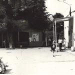 Вход в главный корпус, беседка и дерево, с которого снимали Лазарева (лето 1978)